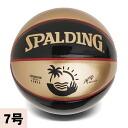 SPALDING UNDERGLASS KOS ball
