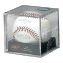 2014 MLB Postseason formula ball Rawlings