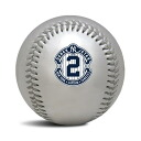 Rawlings MLB Derek Jeter Final Season Silver Commemorative baseball