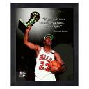 NBA bulls # 23 Michael Jordan 8 x 10 Pro Quote (Champion Trophy) Photo File