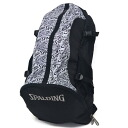 SPALDING NBA CAGER backpack (crazylogo)