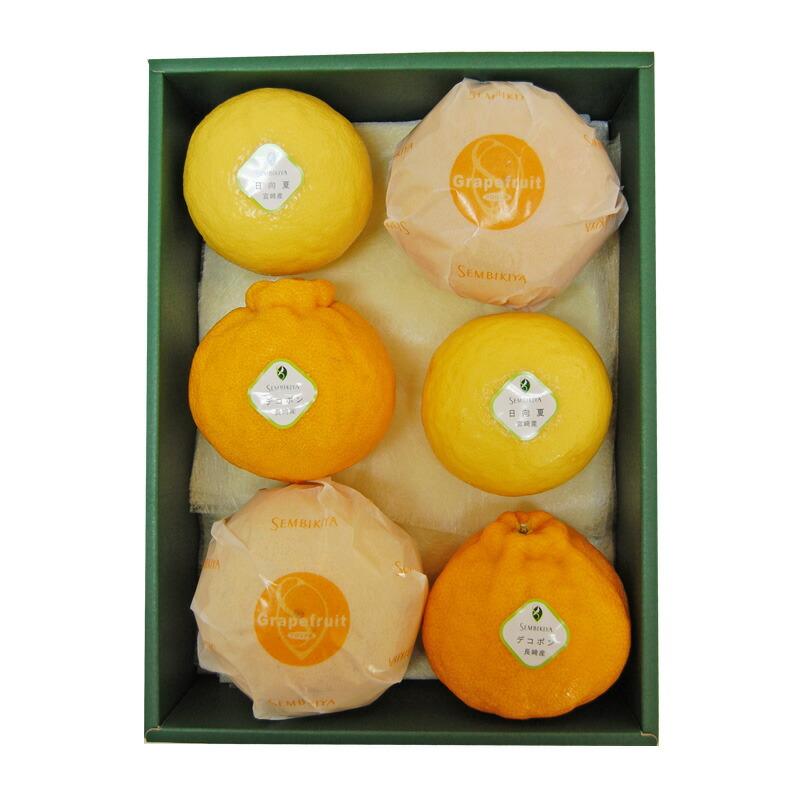 柑橘果物詰合¥6,264