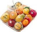 Senbiki Shop Home Office (せんびきや) seasonal fruits refill case (7)