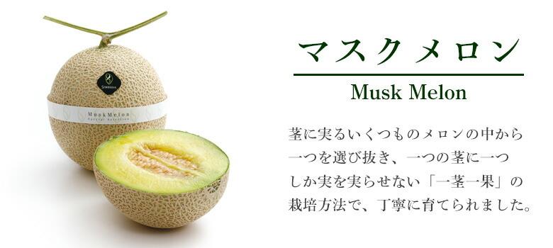 千疋屋総本店 高級果物 贈答用 マスクメロン
