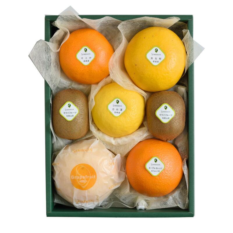 季節の果物詰合(1) 化粧箱入¥7,236