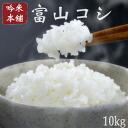 Toyama Prefecture Koshi Hikari 10 kg!
