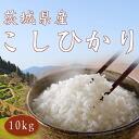 10 kg of 26 yearly output new rice Koshihikari from Ibaraki