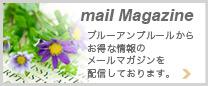 メールマガジンを配信