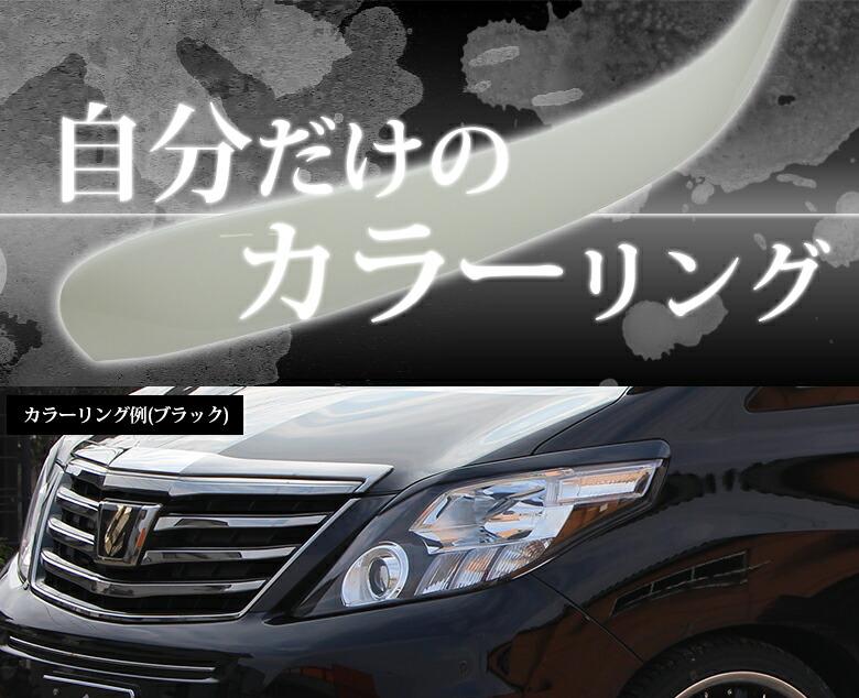 TOYOTA20系アルファード専用アイライン(未塗装)
