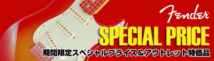 Fender Special Price