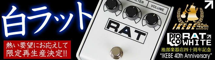 白RAT再び!