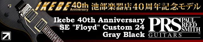 PRS SE Floyd Custom24 GB