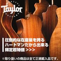 Taylor_Guitar