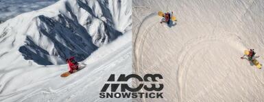 MOSS SNOWSTICK