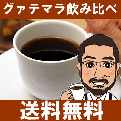 【送料無料】グァテマラ3種飲み比べセット