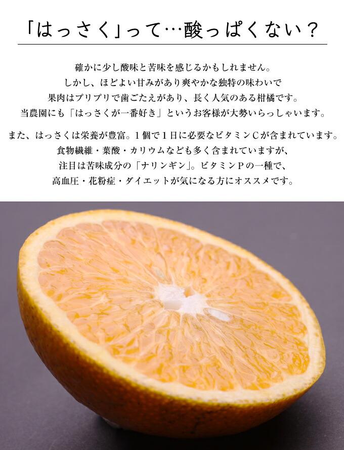お試し富士柿3.5キロ