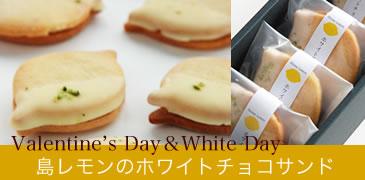 島レモンのホワイトチョコサンドクッキー 5個入ギフト
