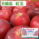 Approximately 4.5 kg of Jonathan apple Aomori apple no wax (approximately 28-33 balls)