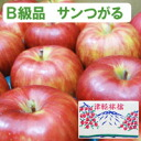 Approximately 15 kg of King forest (phosphorus to carry on its back) Aomori apple no wax (approximately 54-60 balls)
