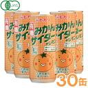 Mandarin orange pop + lemon (250 ml of *30 Motoiri) 】