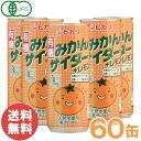 Mandarin orange pop + lemon (250 ml of *30 can)