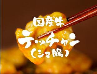 国産牛テッチャン(シマ腸)