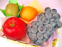Autumn petit fruit set