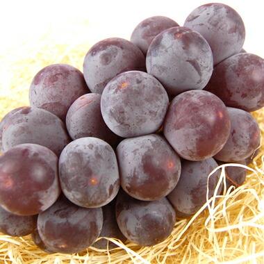 【秋のギフトに】りんご、梨、ぶどうの入った秋のラッピング果物セット