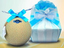 Melon gift BLUE (melon big ball size) such as the flower