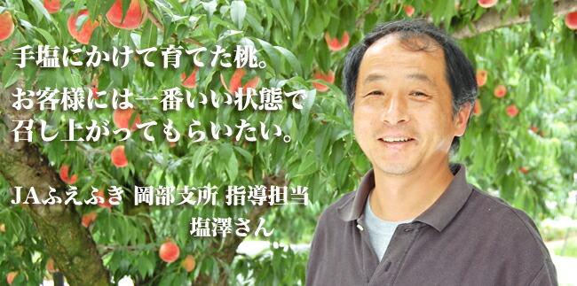 【お中元や夏ギフトにフルーツ】山梨・春日居岡部の桃