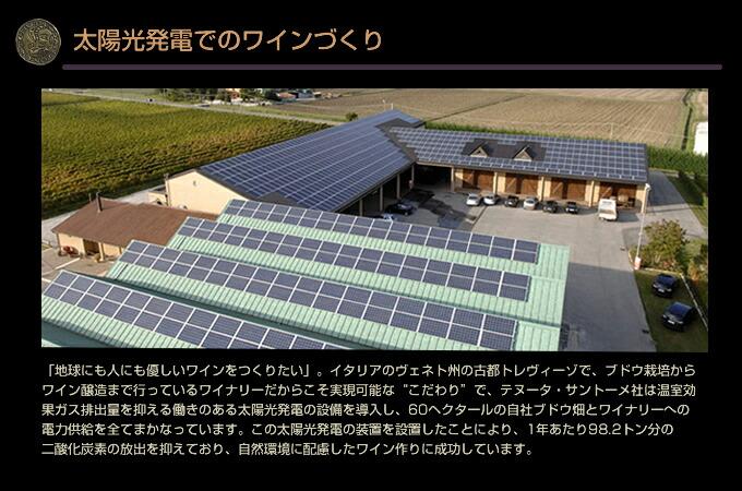 テヌータ・サントーメ社 太陽光発電でのワイン作り