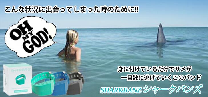 目の前にサメが現れた時のために!