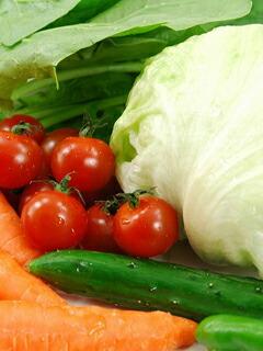 野草菜果 植物発酵エキス腸内環境改善飲料 がん治療の栄養補助 免疫強化 自然治癒力