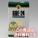 Ginkgo biloba leaf extract GBE-24 140 grain into