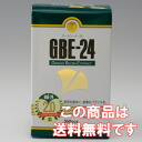Ginkgo biloba leaf extract GBE-24 economical 360 grain into