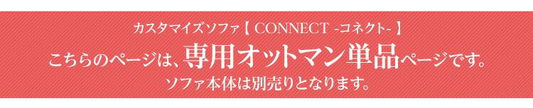 �������ޥ������ե���-Connect-���ͥ��ȡۡʥ��åȥޥ�ñ�ʡ�