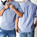 ★ new year 2015! American Eagle mens gingham shirt AEO PLAID BUTTON DOWN SHIRT blue (0153-8931) (S, M, L, XL, XXL) (over 10,800 yen, and, in large size, 100% genuine, new, cheapest Rakuten challenge! )