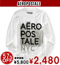 AeroPOS tail men Ron T LONG SLEEVE AERO CREW TEE bleach (6387)(S,M,L,XL)( same day shipment, 100% genuine article, regular article, shop buying, men's big size, new work, American casual)