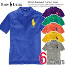Six colors of polo Ralph Lauren Boys big pony short sleeves polo shirt Short-Sleeved Cotton Polo (POLO RALPH LAUREN)(29196316)(S,M,L,XL), numbering, polo shirt (men's new work)