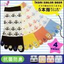 Five toe socks Ikari pattern ★ sailor bear five finger sneakers socks [23-25 cm] [antibacterial] bears Marin sneaker socks ankle Ikari pattern dot five fingers five finger socks summer mesh bear bear pattern socks