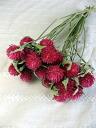 草莓花束制作过程视频-草莓花束包装教程图解|手工|包