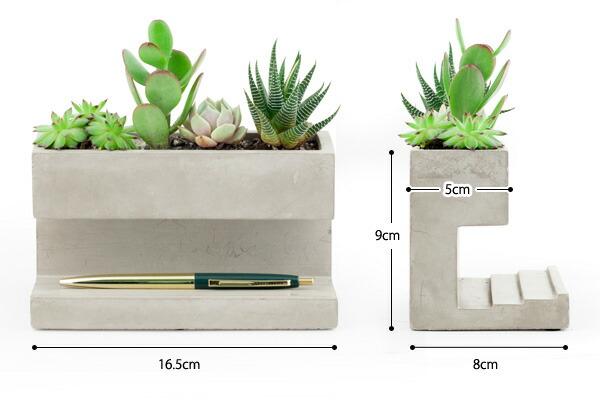 KIKKERLAND コンクリートデスクトッププランター Lサイズ