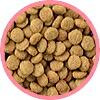 ナチュラルハーベスト 腎臓ケア用キドニア (ドッグフード 成犬 シニア犬 療法食 チワワ 小型犬)