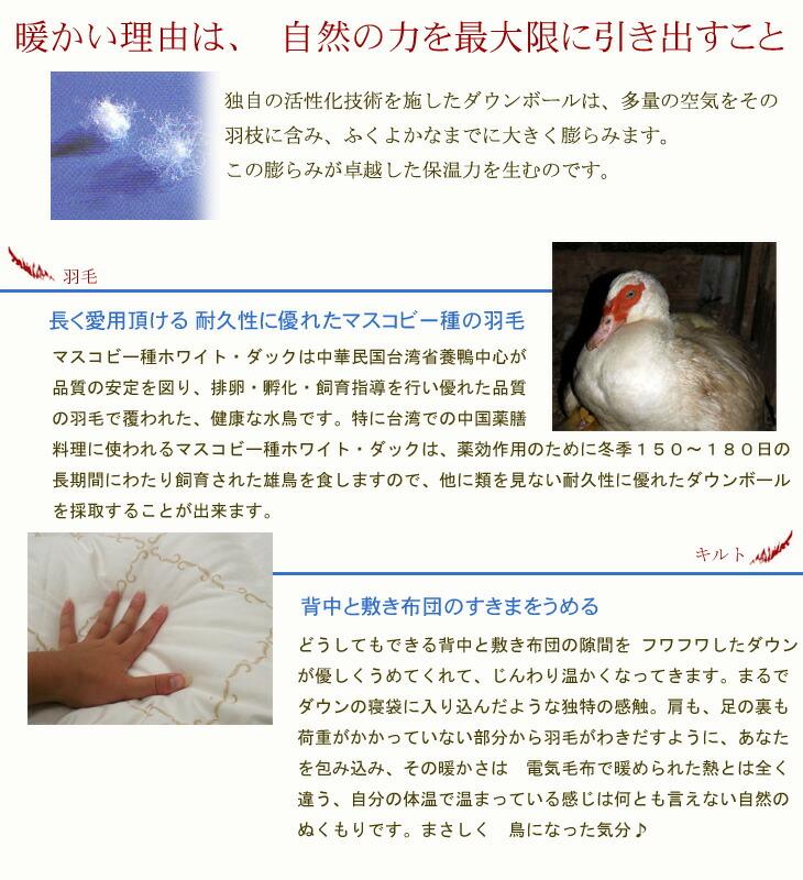 iwata羽毛