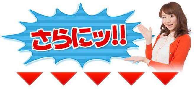 【送料無料】折りたたみ自転車 (15色) グラフィス 20インチ シマノ製6段ギア★かご・カギ・ライト付 自転車 スポーツ・アウトドア メンズ レディース スポーツ 運動 健康 美容 ☆