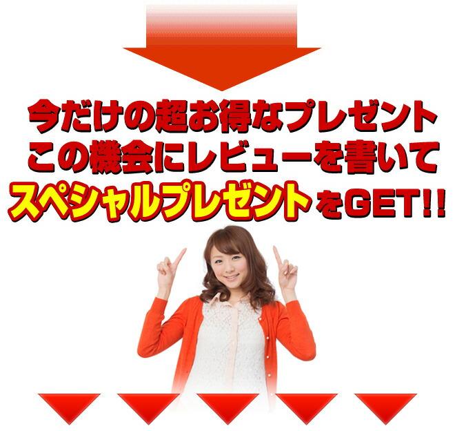 pre_bag_top_gr_03.jpg
