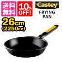 Castey frying pan 26cm / キャステイ fs3gm