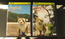 In Nya I this THE STORY one post town Cat walk nakasen-do tsumago accommodation Magome accommodation hen + 2 town Cat walk Nakasendo Narai lodging accommodation (3) (all two) (complete set DVD) / pre DVD [other / variety] (AN-SH201503)