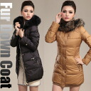 ★ period limited price ★ raccoon fur coat [ladies and real far, large size, dark caramel-ethnic-Inn port, and women's autumn-winter