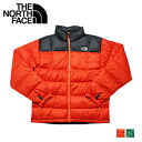 The north face THE NORTH FACE down jacket A9VQRS0 M ICE TRAIN JACK nylon mens blue orange Green
